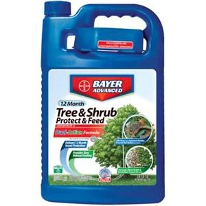 Bayer Advanced Tree & Shrub Protect & Feed