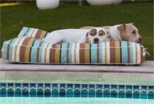 Animals Matter Luxury Outdoor Pet Bed