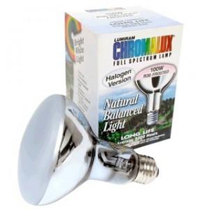 Chromalux R30 full spectrum incandescent reflector lightbulb
