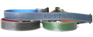 Personalized Leather Dog Collar - Large to Extra Large