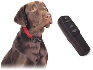 PetSafe Deluxe Big Dog Remote Trainer
