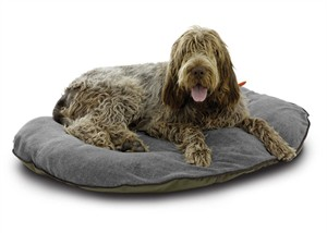 Classic Accessories 70-010-013701-00 Dog Travel Bed