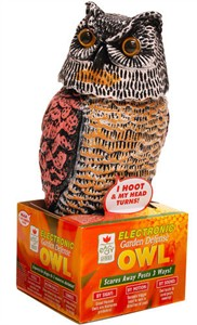 Electronic Hooting Owl