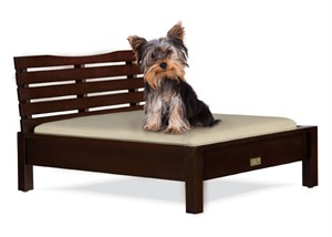 Contemporary Platform Bed for Dog or Cat