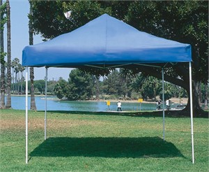 Summit Deluxe 10' x 10' Pop Up Canopy