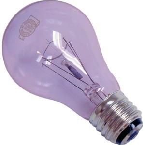 Full spectrum lightbulbs 60 watt standard